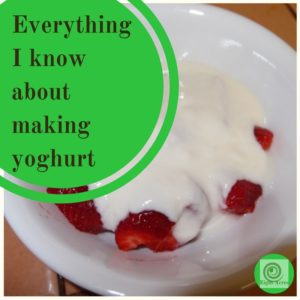 Everything I know about making yoghurt