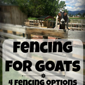 Fencing for Goats and Other Small Livestock
