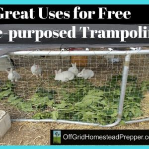 5 Great Uses for Free Trampolines