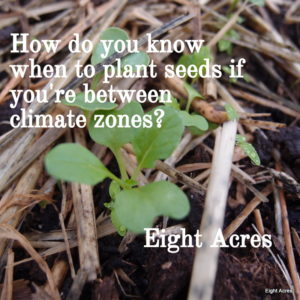 Knowing when to plant if you're between climate zones