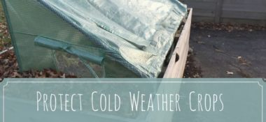 Protect Cold Weather Crops with a Cold Frame