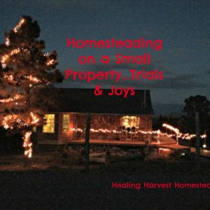 Homesteading on a Small Property…with Neighbors!