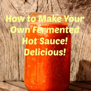 Make Your Own Fermented Hot Sauce! This is Our Favorite Hot Sauce Recipe!