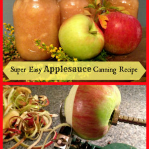 Super Easy Applesauce Canning Recipe