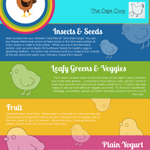 Top Treats for Happy Backyard Chickens