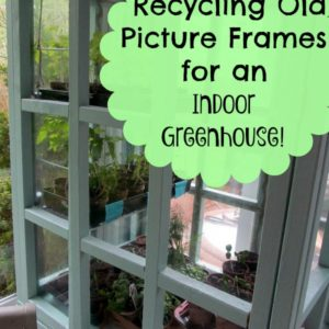 Recycle Picture Frames for an Indoor Greenhouse