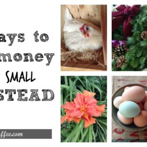 52 Ideas for Making an Income on a SMALL Homestead