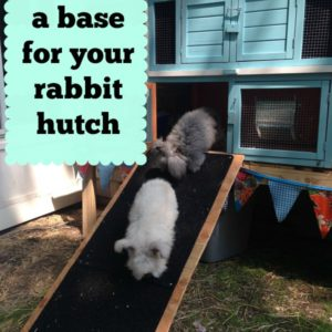 Build a Raised Base for a Rabbit Hutch