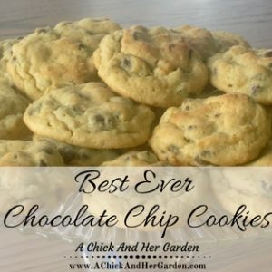 These Truly Are The Best Ever Chocolate Chip Cookies