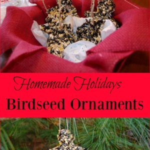 Homemade Holiday – Birdseed Ornaments