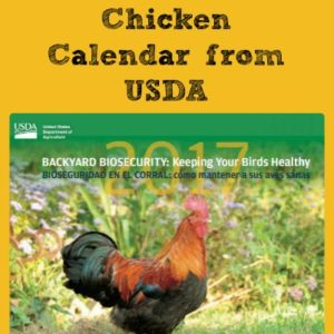 Get Your FREE Chicken Calendar (USDA)!