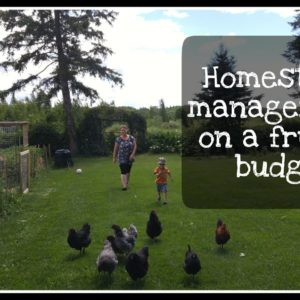 Homestead Management on a Frugal Budget