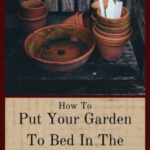 How To Put Your Garden To Bed In The Fall