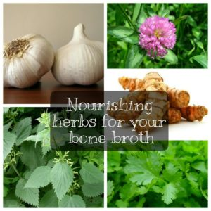 Nourishing Herbs for Your Bone Broth