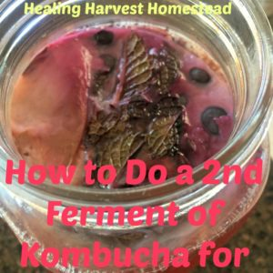 How to do a Second Ferment of Kombucha for Flavor & FIZZ