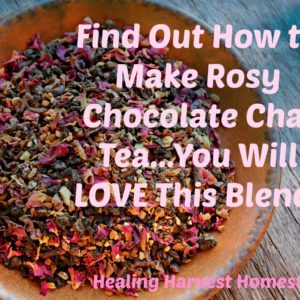 Rosy Chocolate Chai Tea….Mmmmm….So Good for Cold Days