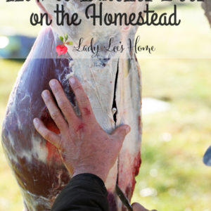 How to Butcher Deer on the Homestead