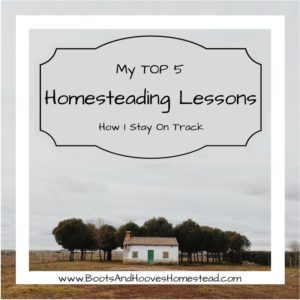 Homestead Lessons
