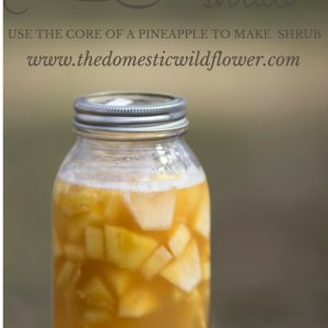 Pineapple Core Shrub