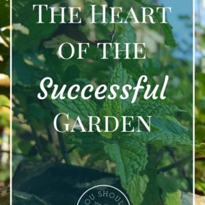 The Heart of The Successful Garden