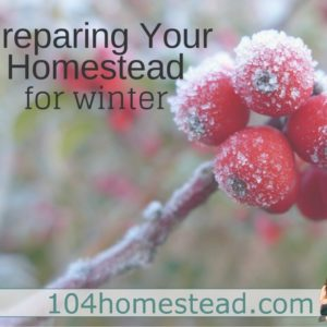 4 Things to Get Done on the Homestead Before Winter Comes