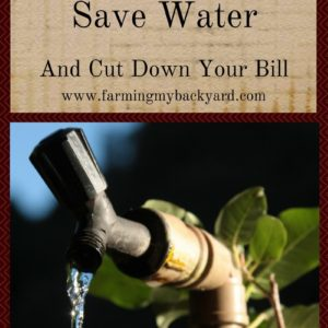 20 Ways to Save Water And Cut Down Your Bill