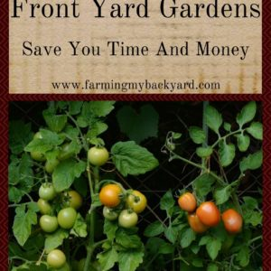 Beautiful Front Yard Gardens Save You Time And Money