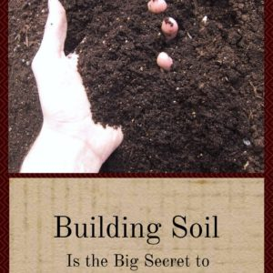 Building Soil Is The Big Secret To Great Gardens