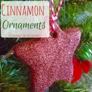Cinnamon Ornaments with Glitter – Homemade Ornaments