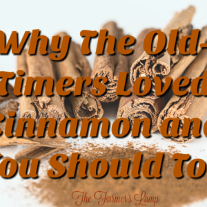 Why the Old TImers Loved Cinnamon and You Should Too