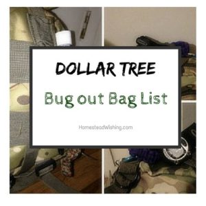 Dollar Tree Bug Out Bag List