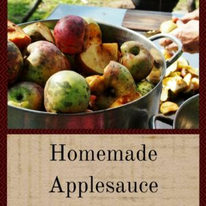 Homemade Applesauce Just The Way You Like It