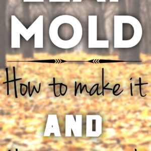 All About Leaf Mold and how to make it!