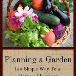 Planning a Garden Is a Simple Way To a Better Harvest
