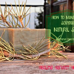 How to Make Pine Essential Oil Hot Process Soap….Favorite Holiday Soap #2