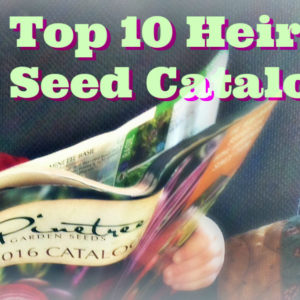 10 Favorite Heirloom Seed Companies