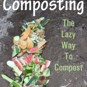 Trench Composting – The Lazy (and simple) composting method!