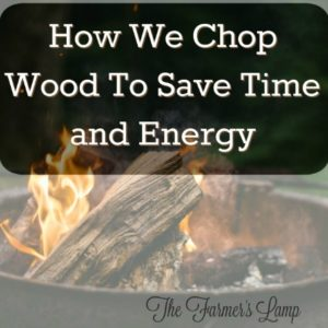 How We Chop Wood To Save Time and Energy