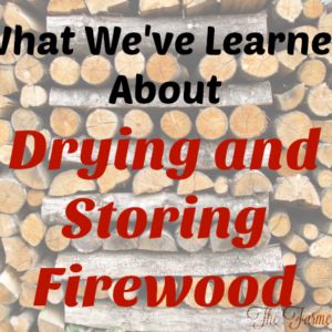 What We've Learned About Drying and Storing Firewood
