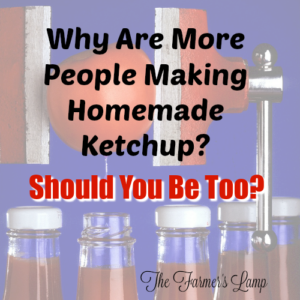 Why Are More People Making Homemade Ketchup? Should You Be Too?