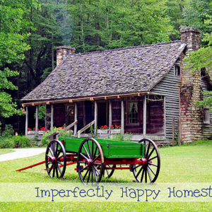 Homesteading Prepper – 8 Tweaks to Prepare