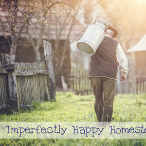 Homesteading Skills We Need to Learn and Teach