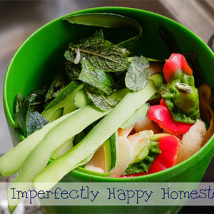 6 Kitchen Composting Tips