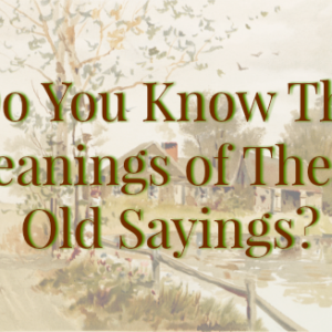 Do You Know the Meaning of These Old Sayings?