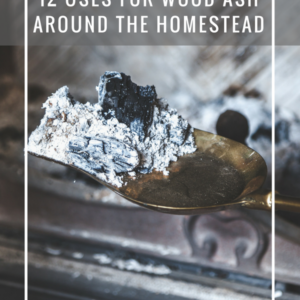 12 Uses For Wood Ash Around the Homestead