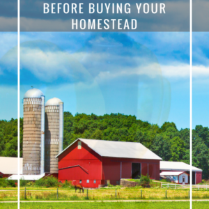 17 Things to Do Before Buying Your Homestead