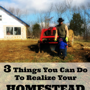 3 Things You Can Do To Realize Your Homestead Dreams