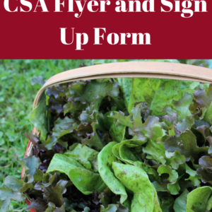 Designing a CSA Flyer and Sign Up Sheet