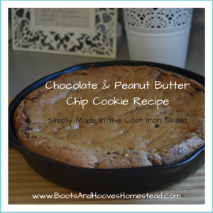 Peanut Butter and Chocolate Chip Giant Cookie