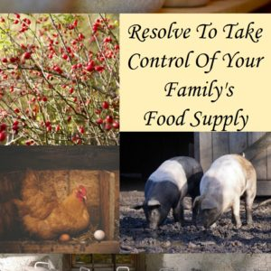 Is Your Family's Food Supply Safe?  Could You Make It Safer?